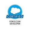 Salseforce Force.com Developer