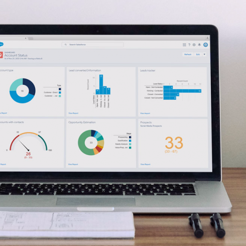 Salesforce Analytics Cloud