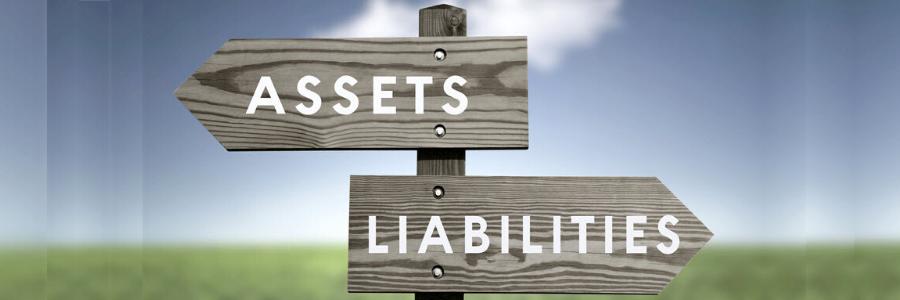 assets liabilities encaptechno
